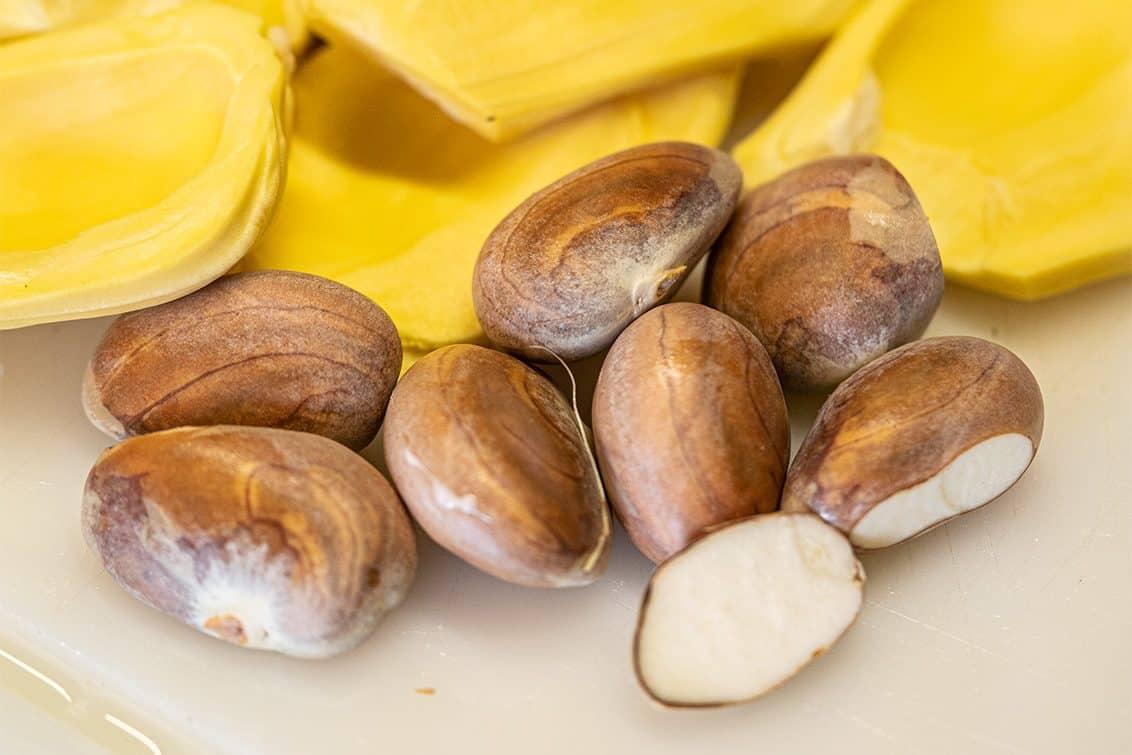 Jackfruit-Kerne