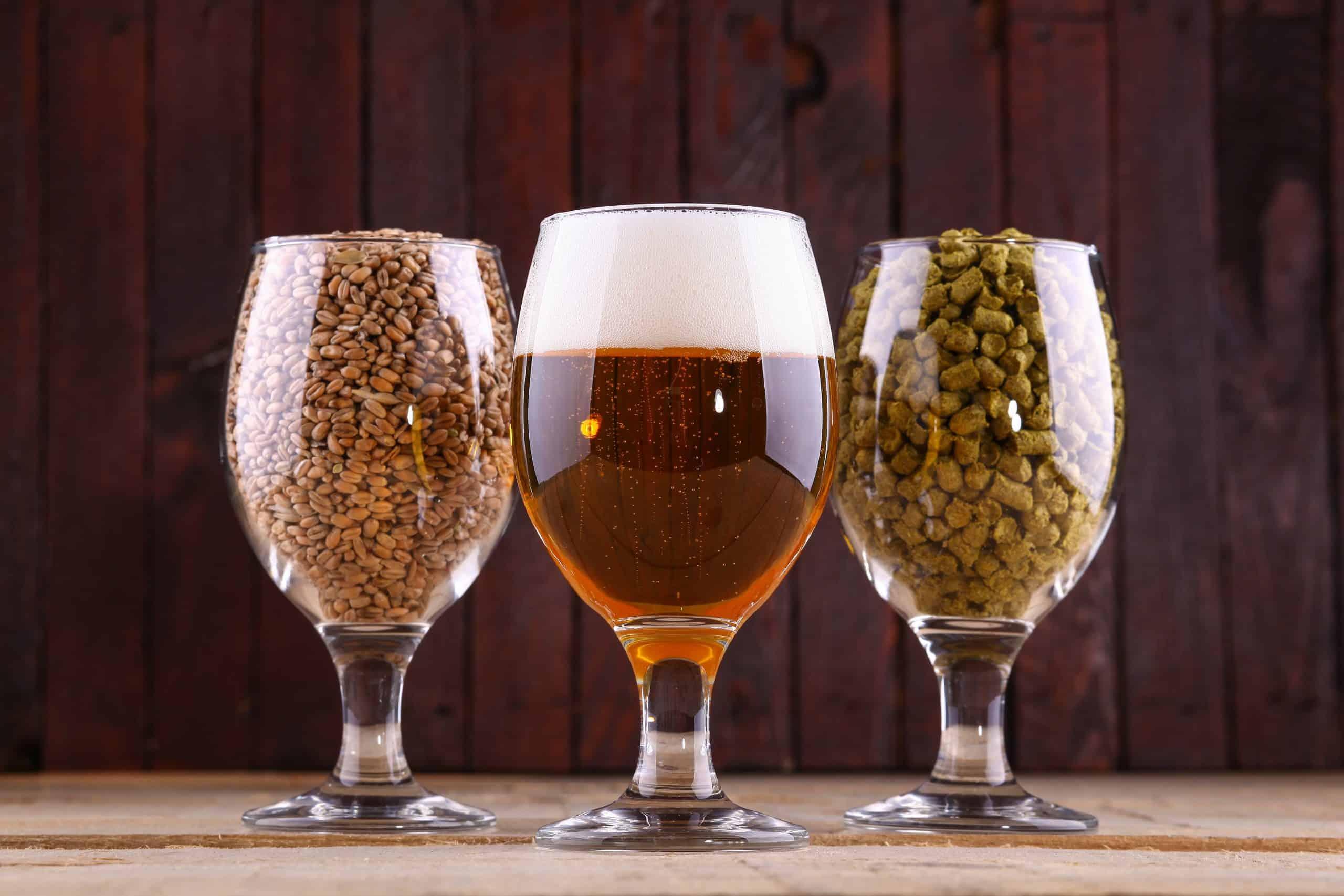 Bierbrillen, Malz und Hopfen auf Holzhintergrund